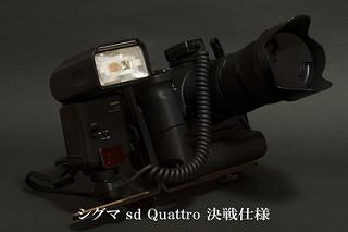 [非模型話] sd Quattro購入